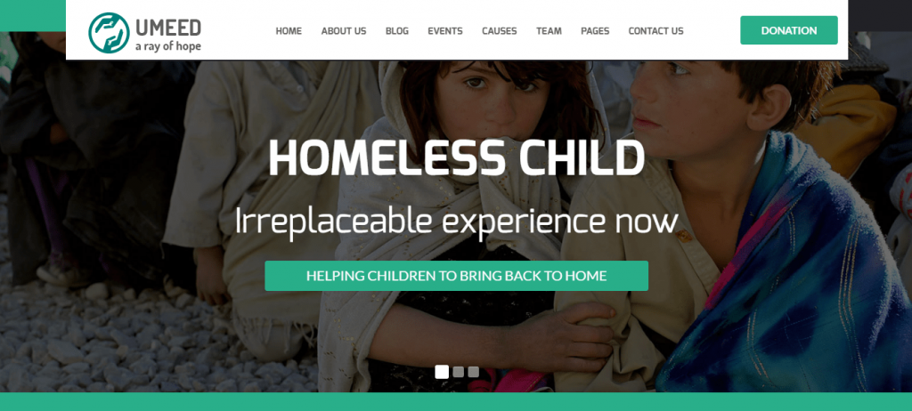 Best Non-profit WordPress Themes 2016